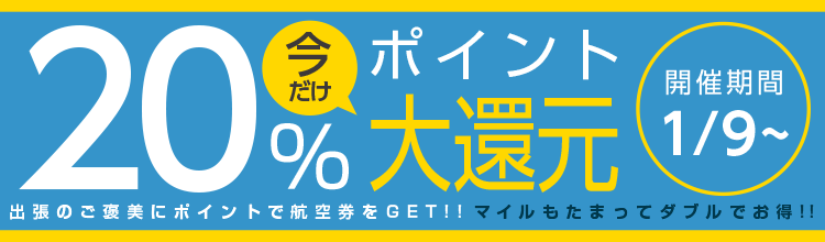 アプリで国内航空券購入キャンペーン